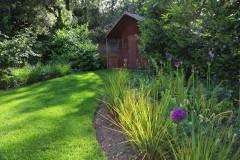 Woodland & Shade Planting